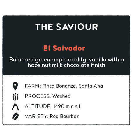 Coffee - The Saviour El Salvador