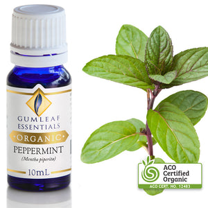 GUMLEAF ORGANIC PEPPERMINT ESSENTIAL OIL
