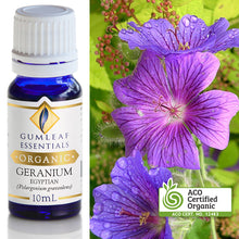 Load image into Gallery viewer, GUMLEAF ORGANIC GERANIUM ESSENTIAL OIL