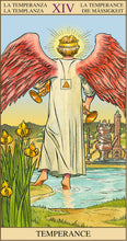 Load image into Gallery viewer, Tarot Cards - Tarot of the New Vision Tarot