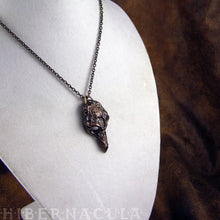 Load image into Gallery viewer, Plague Mask -- Pendant in Bronze or Silver | Hibernacula