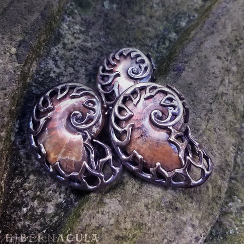 Ammonite Reliquary -- Red Opal Ammolite in Bronze or Silver | Hibernacula