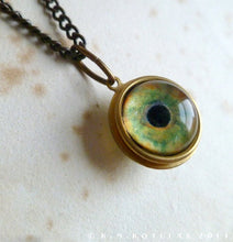 Load image into Gallery viewer, Spherical Numina Iris Pendant -- Bird of Prey, Large | Hibernacula