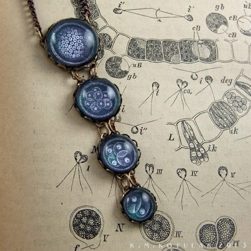 Mitosis -- Illustrated Brass Necklace | Hibernacula