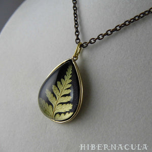 Fern Drop -- Preserved Fern Pendant in Brass | Hibernacula