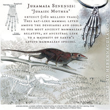 Load image into Gallery viewer, Primal Hamsa -- Juramaia Sinesis Fossil Pendant in Bronze or Silver with Raw Diamond | Hibernacula