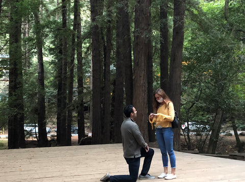 Anna and Daniel proposal story