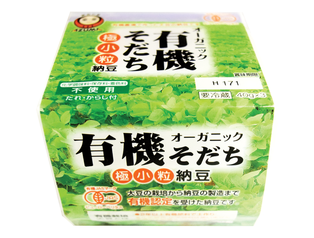 Frozen Natto (Fermented Soybeans) 12 PK