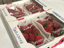 Load image into Gallery viewer, AMAOU Japanese DELUXE Strawberry Large 270g/PK Japan (Pre-order)