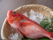 Load image into Gallery viewer, Ji Kinmedai - Alfonsino SUSHI QUALITY 2.5 LB/PC