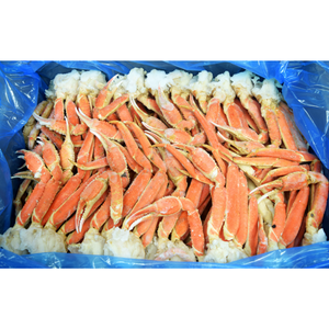 Frozen Snow Crab Cluster 8-10 OZ (30 LB CS)