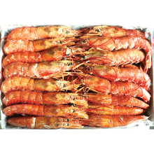 Load image into Gallery viewer, Frozen Aka Ebi (Red Shrimp) Box 4.4 LB