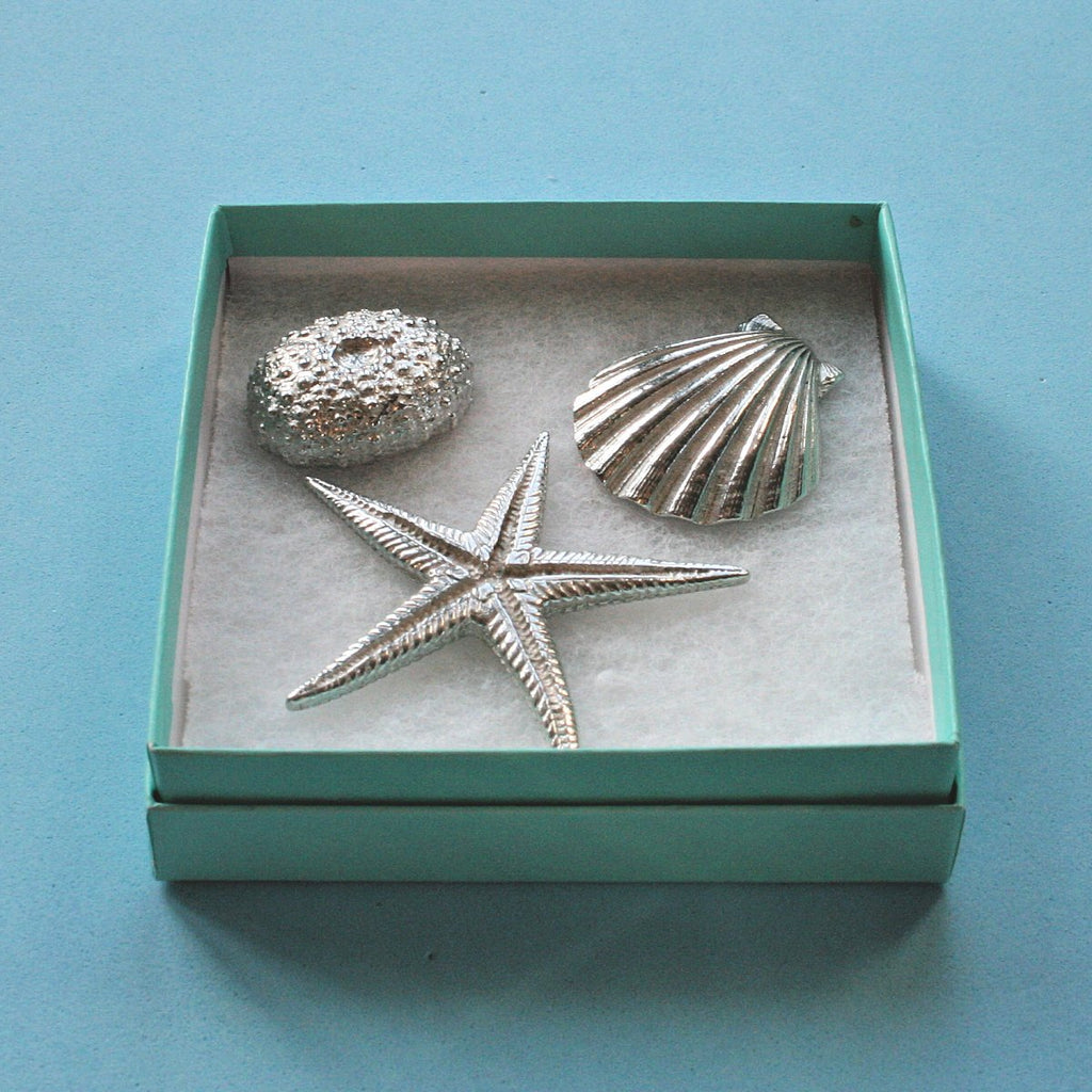 Boxed Gift Set - Three Shells