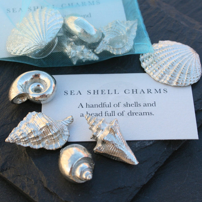 Sea Shell Charms