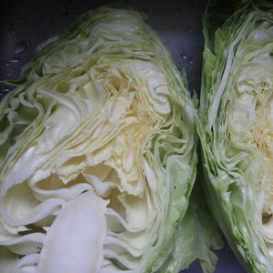 Cabbage: Early Jersey Wakefield
