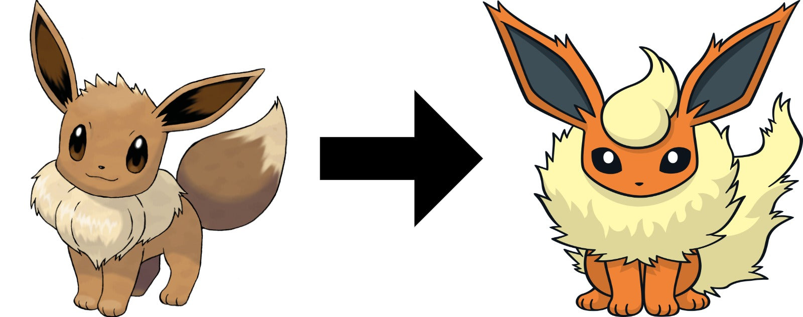 How to Evolve Eevee into Flareon in pokemon sword and shield