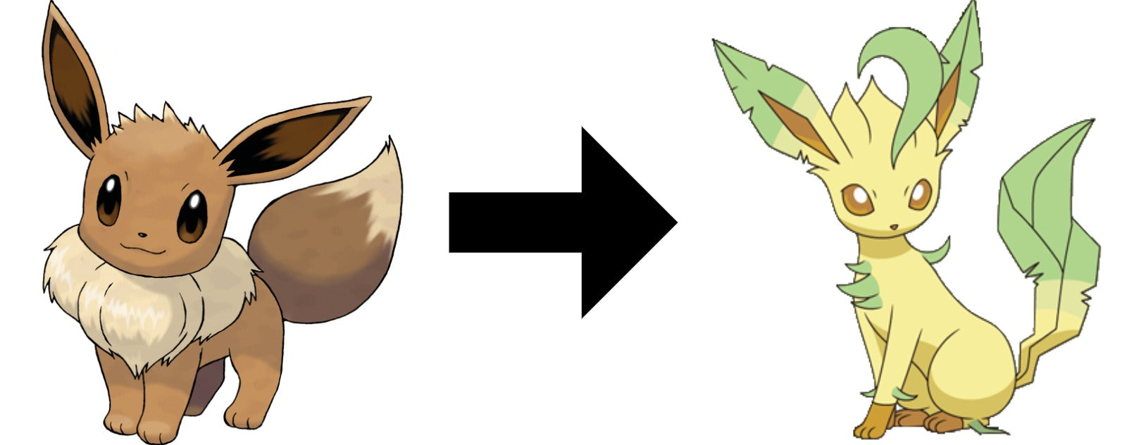 How to Evolve Eevee into Leafeon in pokemon sword and shield