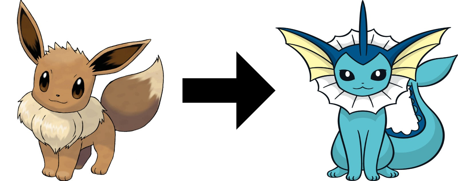 How to Evolve Eevee into Vaporeon in pokemon sword and shield