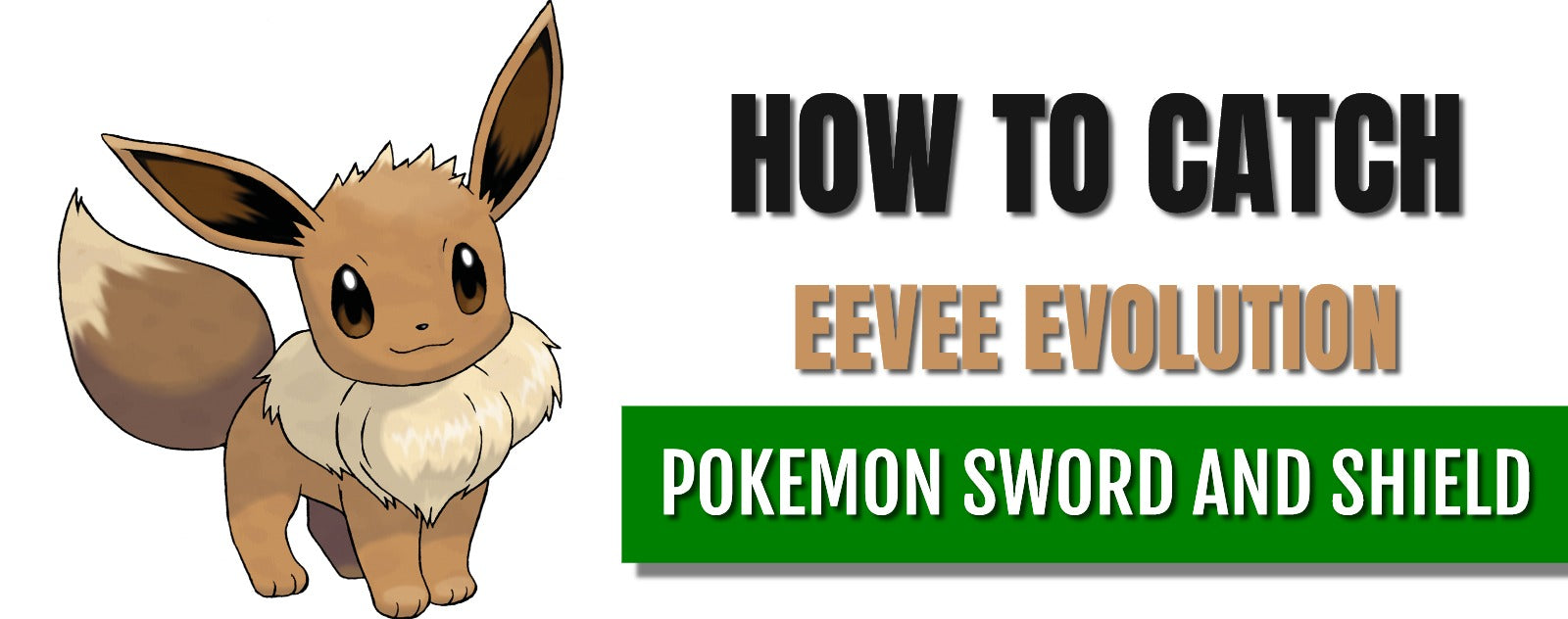 How to catch eevee evolution in pokemon sword and shield