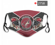 Load image into Gallery viewer, Arizona Coyotes Face Mask - Reuseable, Fashionable, Washable, Several Styles