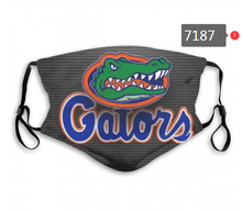 Load image into Gallery viewer, Florida Gators Face Mask - Reuseable, Fashionable, Washable