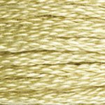 DMC Embroidery Floss -3046
