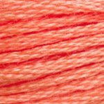 DMC Cotton Embroidery Floss -3340