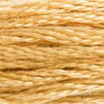 DMC Embroidery Floss -422