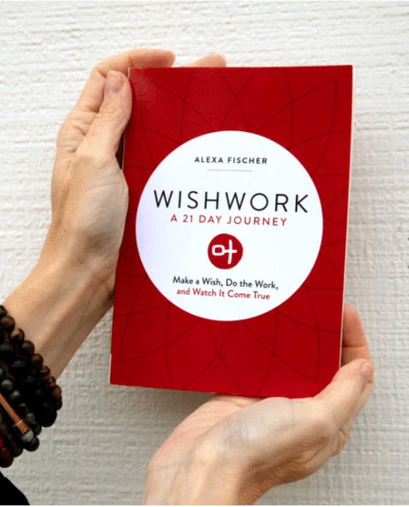 WISHWORK 21 DAY JOURNEY BOOK