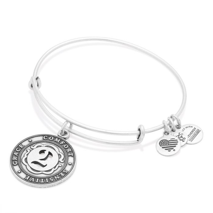 Alex and Ani | Rafaelian Silver Number 2 Adjustable Bangle Bracelet