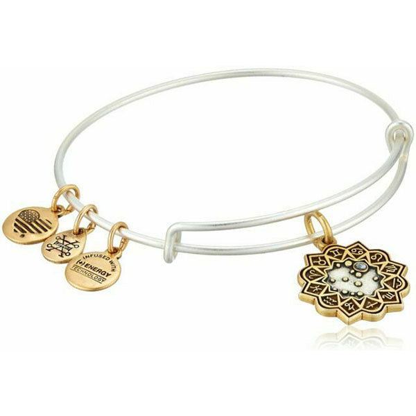 Alex and Ani | Two Toned Gemini Charm Bracelet