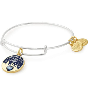 Alex and Ani | Harry Potter Hogwarts Is My Home Adjustable Bangle Bracelet Silver