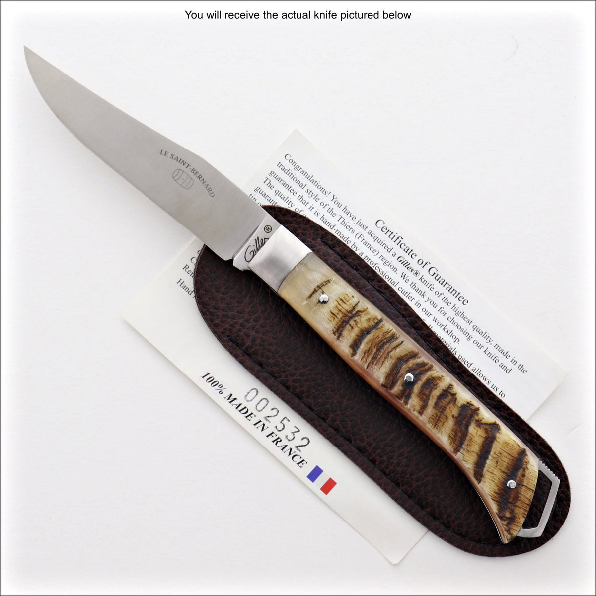 Le Saint-Bernard Pocket Knife - Ram Horn Handle - B