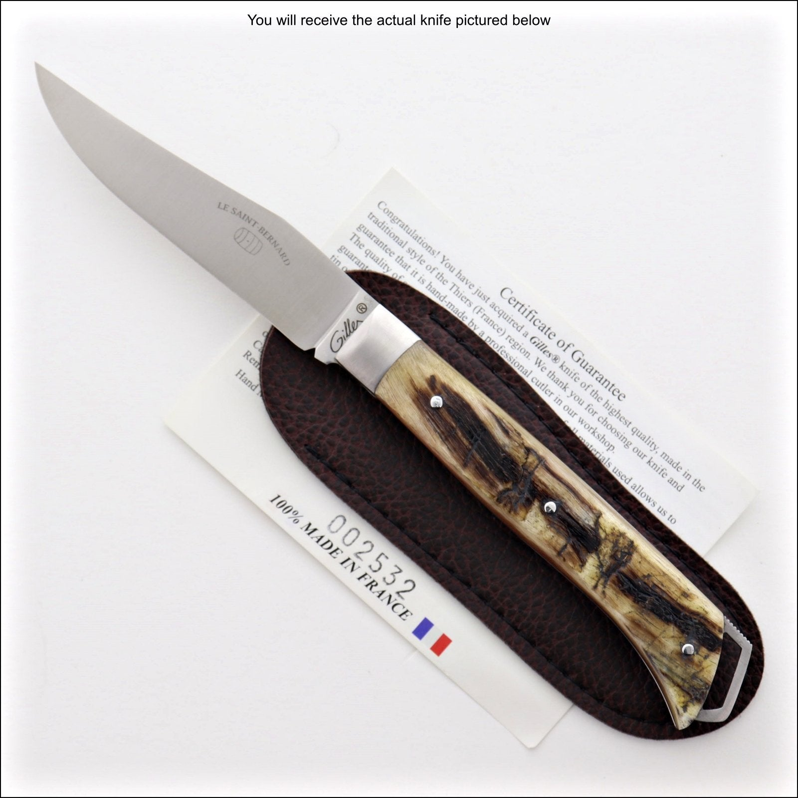 Le Saint-Bernard Pocket Knife - Ram Horn Handle - D