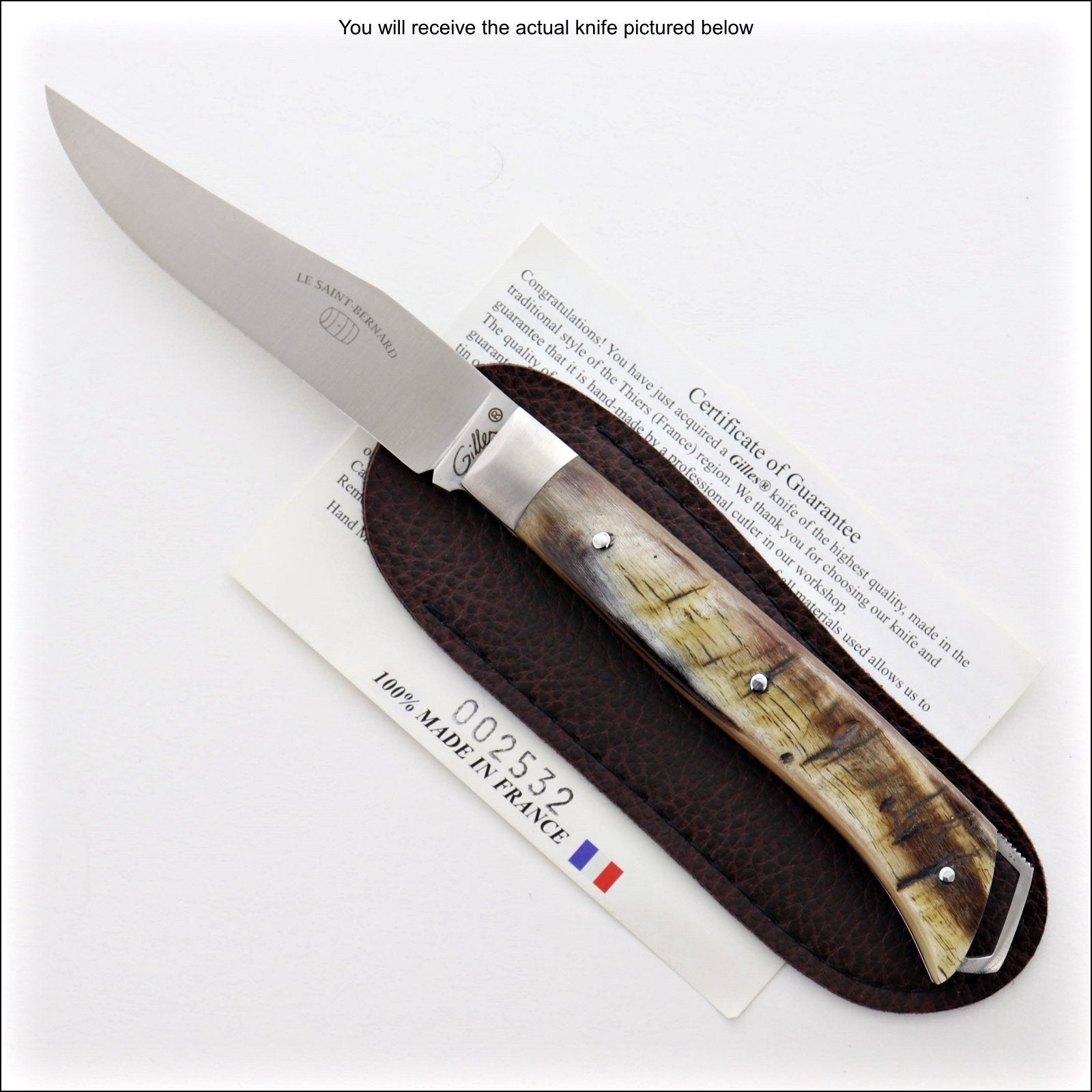 Le Saint-Bernard Pocket Knife - Ram Horn Handle - F