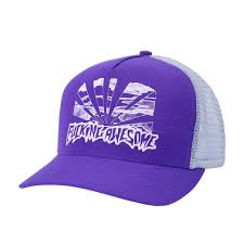 FUCKING AWESOME PRE CURVED SUNSET SNAPBACK PURPLE