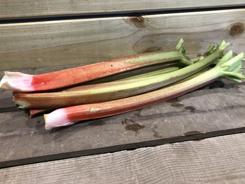 Our Own Homegrown Rhubarb