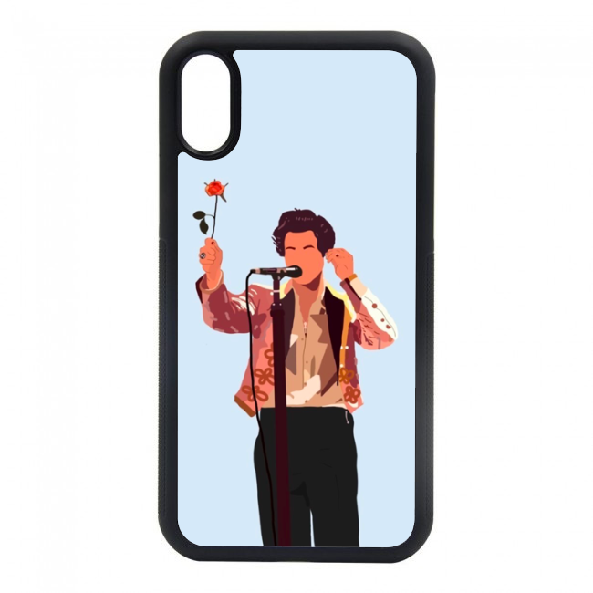 Harry Styles Case