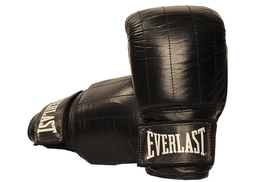 Everlast Guanto Boston