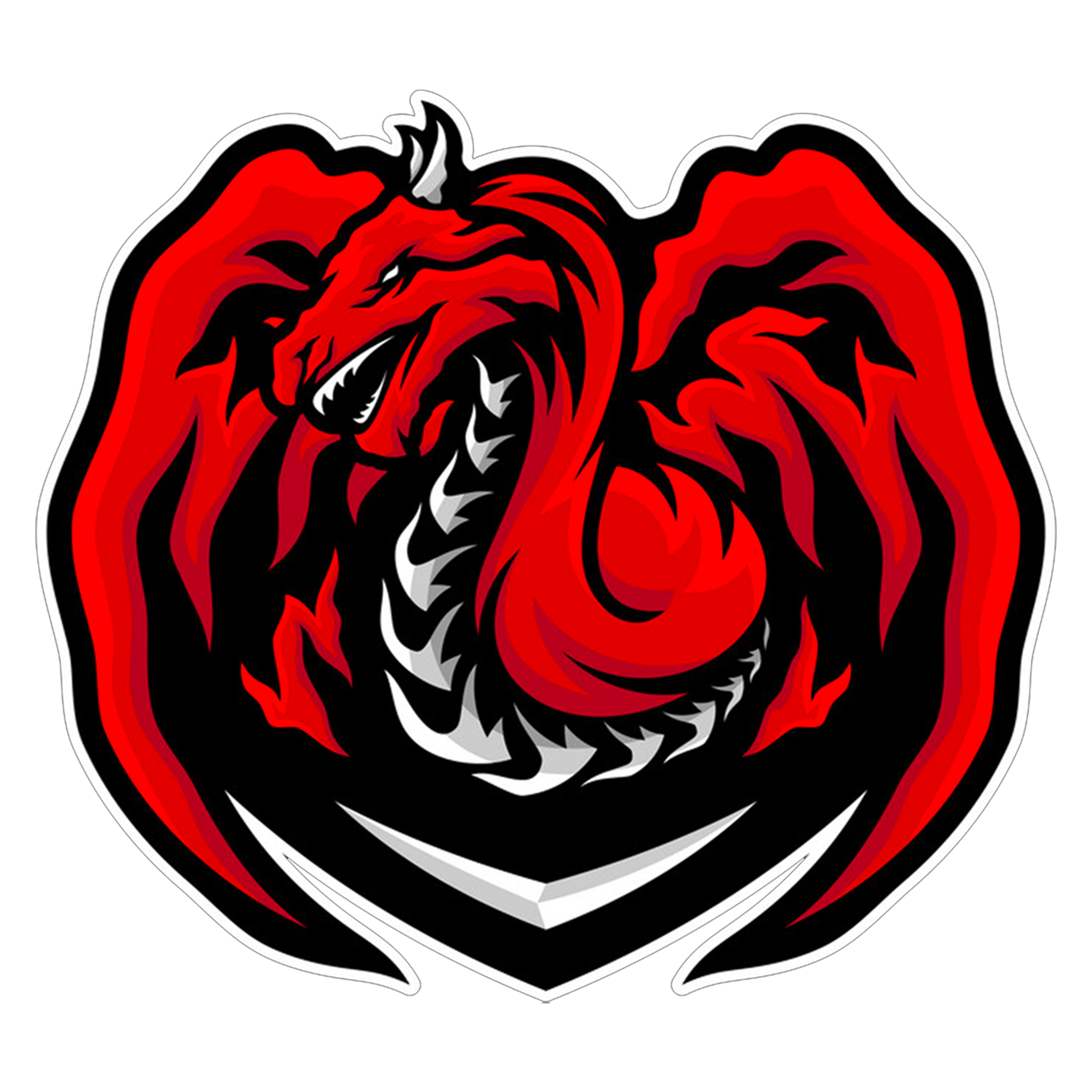 Engaging The Dragon Logo