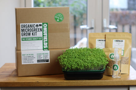 Introduction To Sprouts & Microgreens