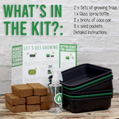 The Big Flavour Kit | Certified Organic Microgreen Grow Kit