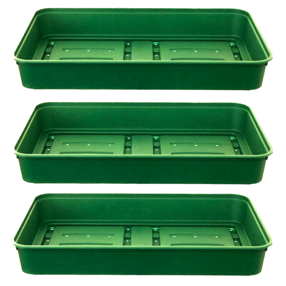 Tray - Large - with Drainage holes (Pack of 3)