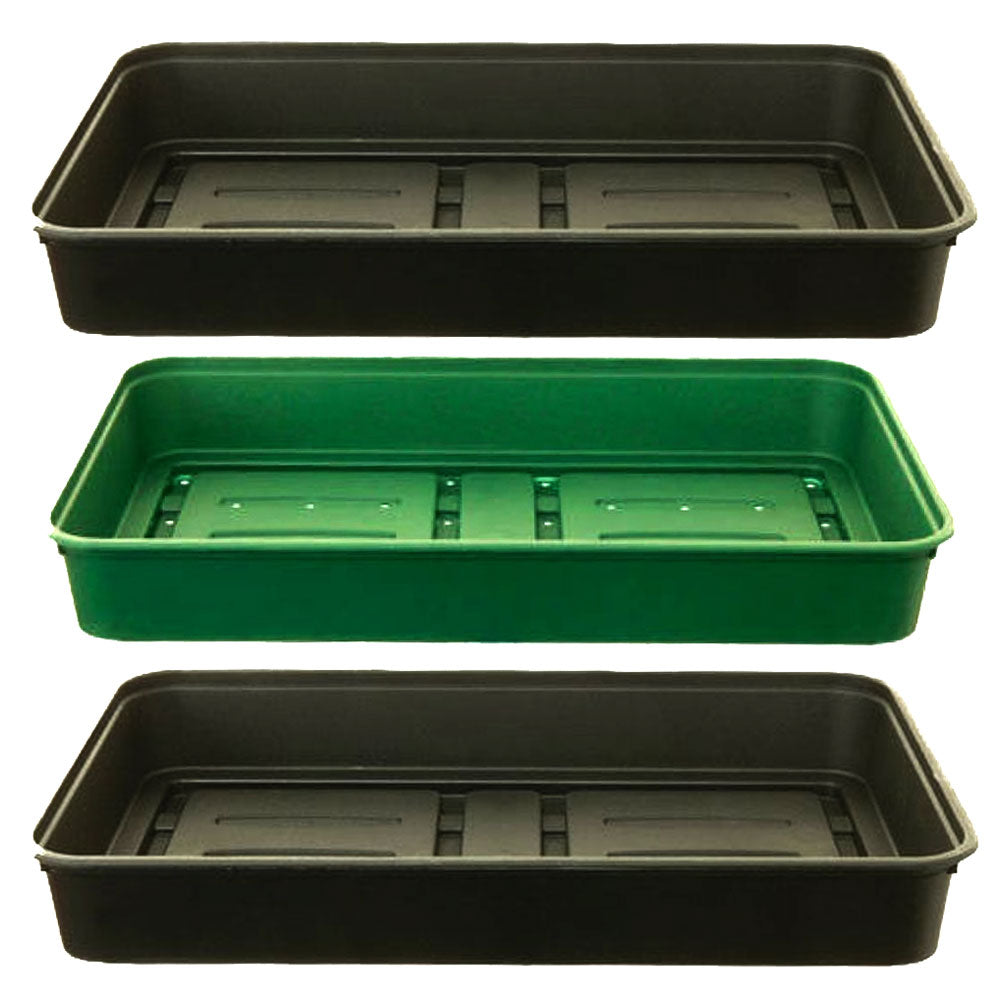 Tray Set - Large (Pack of 3)