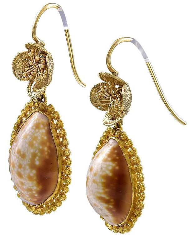 Pair of Georgian Cowrie Shell Gold Earrings