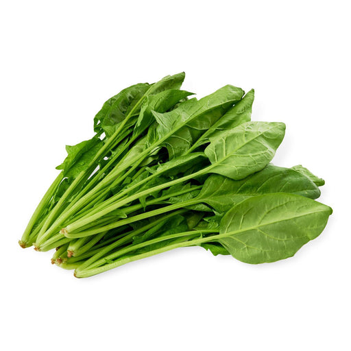 Fresh Horensou Japanese Spinach 200g Honeydaes - Japan Foods Grocery Online