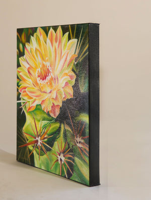 Desert Flower - Cactus Flower Oil Painting