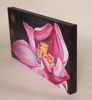 Hidden Gem - Pink Lotus Flower Oil Painting
