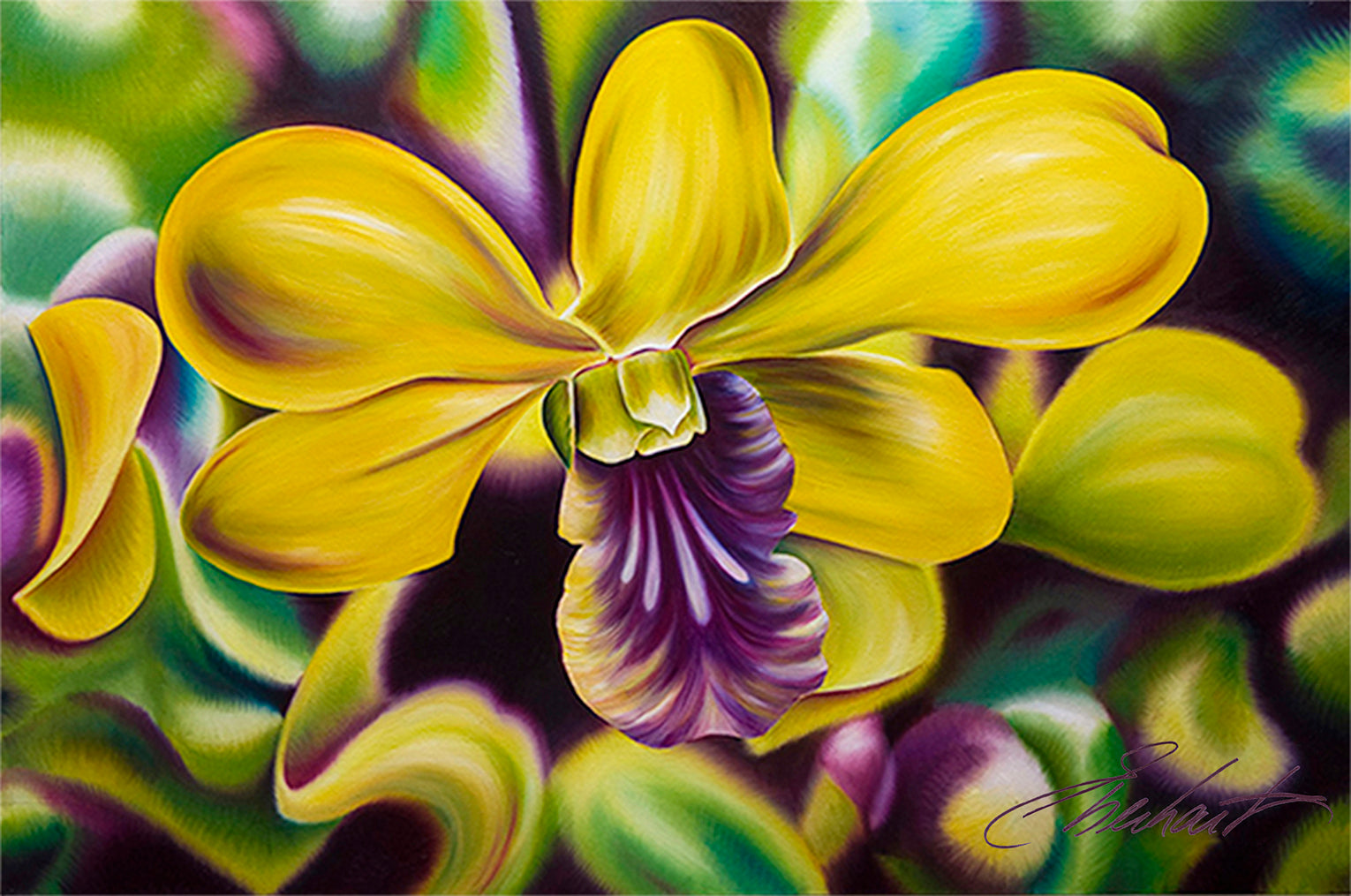 Mana - Vibrant Orchid
