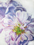 Here Now - White Rose Flower Oil Painting